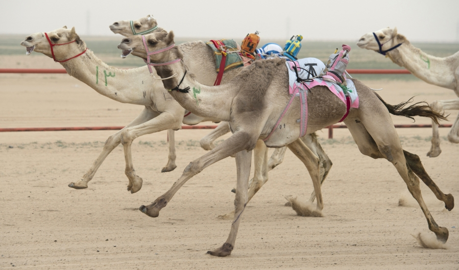 Microservices with Apache Camel