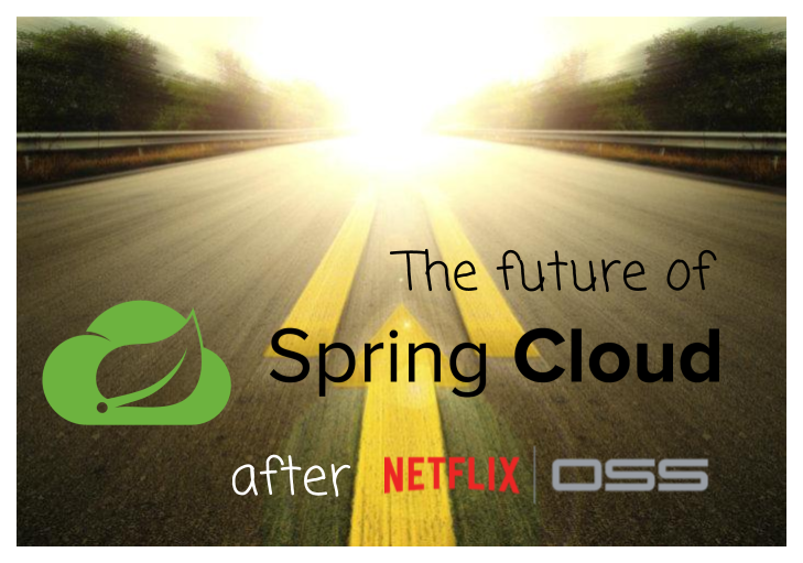 The Future of  Spring Cloud Microservices After Netflix Era