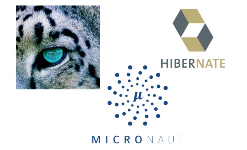 JPA Data Access with MicronautPredator