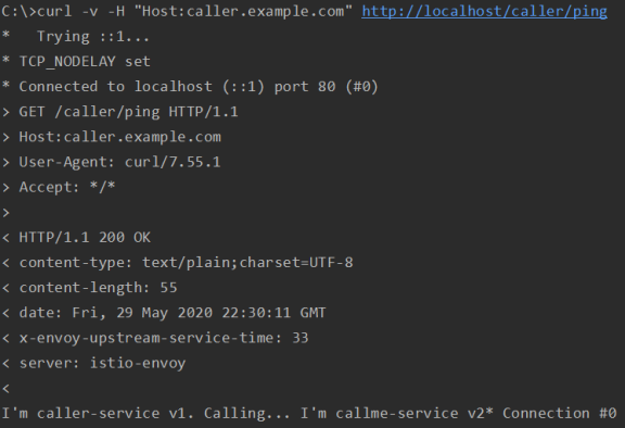 service-mesh-on-kubernetes-istio-spring-boot-curl-ok